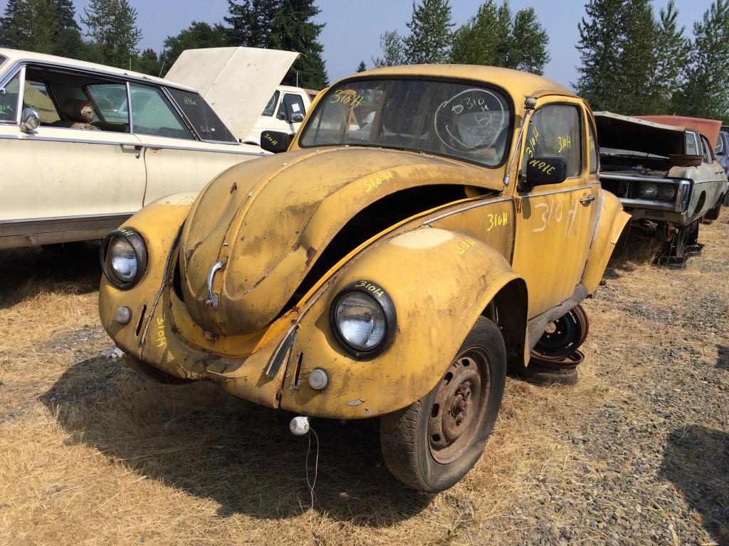 1971 VW Bug