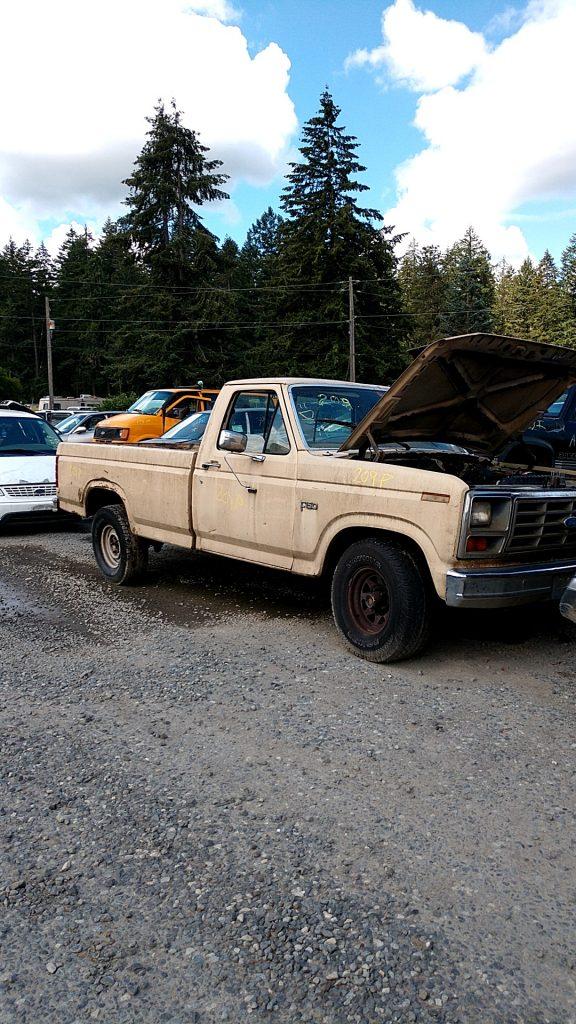 1984 Ford F150 PU