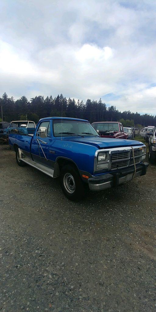 1991 Dodge 250 PU
