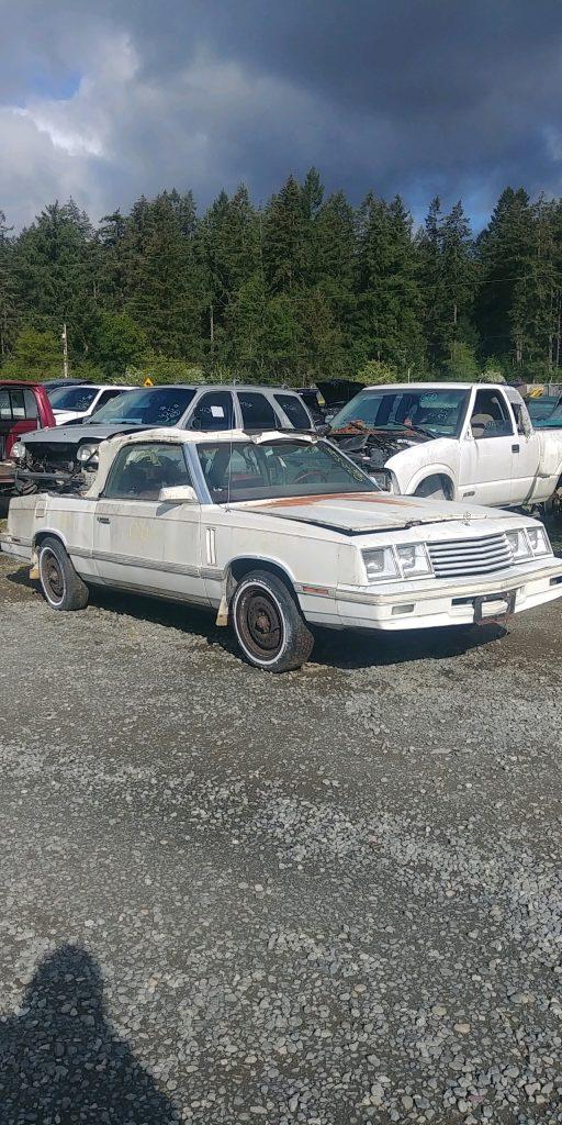 1983 Dodge 400 Conv